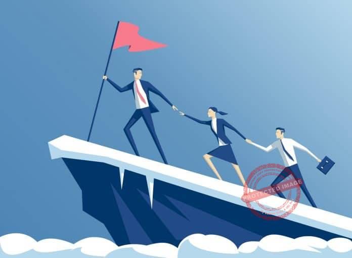 Top Business Disciplines That Ensure Success
