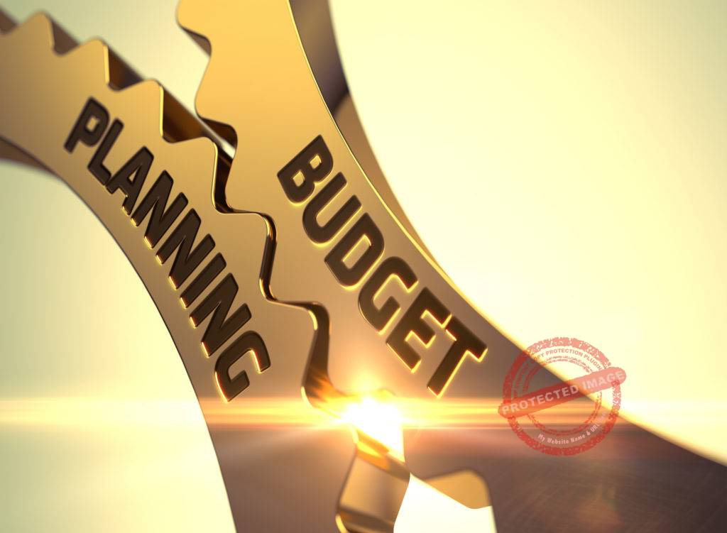 importance of budget projections in a business