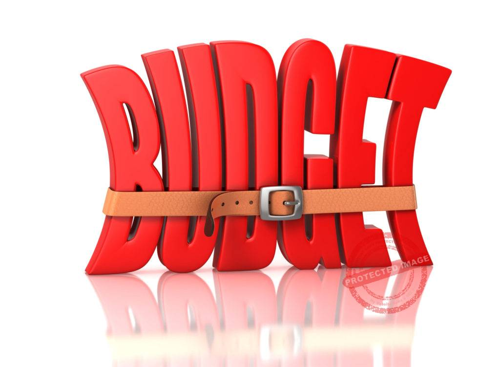 monthly budget in a company