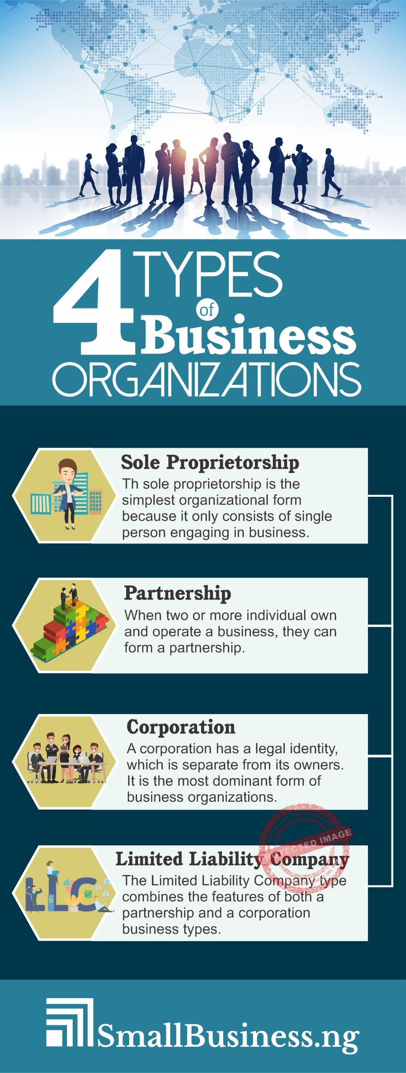Types of business organisation infographic