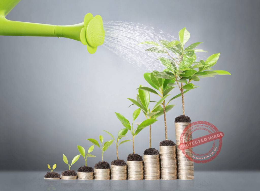 Why is cash flow important in business