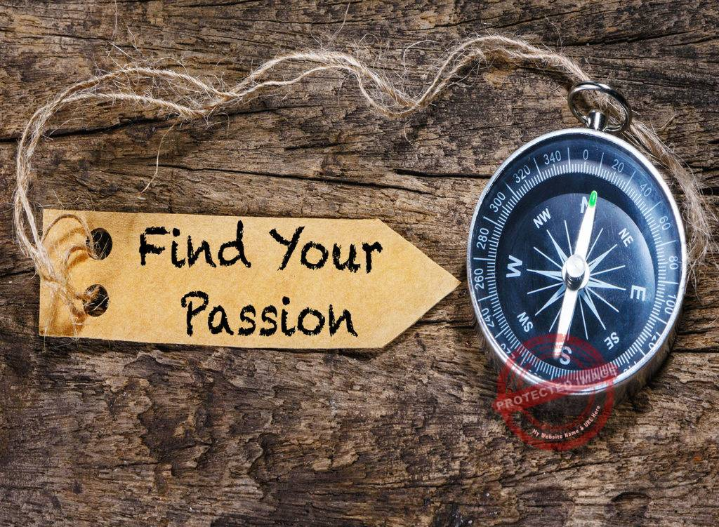 How to find a career you love_