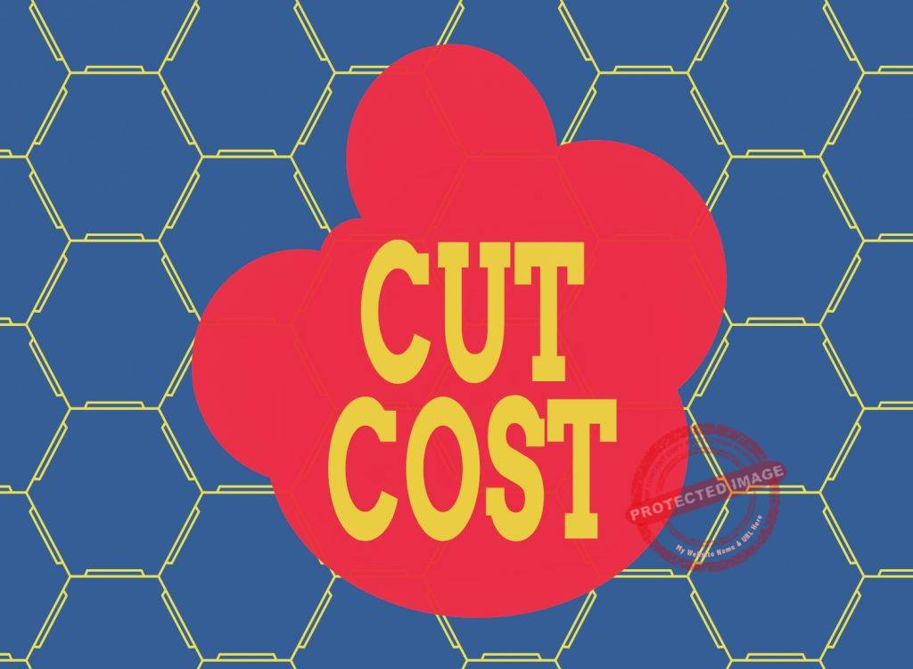 How to cut costs in a business