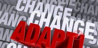 How to Develop Adaptability Skills
